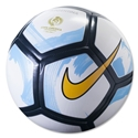 Nike Supporters Copa 16 Ball (Argentina)