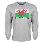 Wales Euro 2016 Element Flag Long Sleeve T-Shirt (Grey)