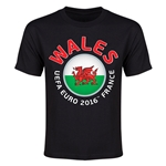 Wales Euro 2016 Flag Youth T-Shirt (Black)