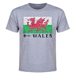 Wales Euro 2016 Elemental Flag Youth T-Shirt (Grey)