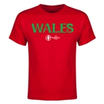 Wales Euro 2016 Youth T-Shirt (Red)