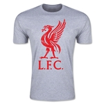 Liverpool Distressed Liver Bird Men's Fashion T-Shirt (Gray)