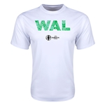 Wales Euro 2016 Elements Training T-Shirt (White)