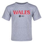 Wales Euro 2016 Core Toddler T-Shirt (Grey)