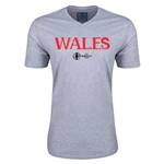 Wales Euro 2016 Core V-Neck T-Shirt (Grey)