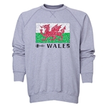 Wales Euro 2016 Fashion Crewneck Sweatshirt (Grey)