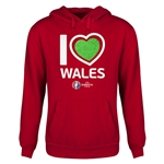 Wales Euro 2016 Heart Youth Hoody (Red)