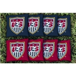 USA Cornhole Bag Set
