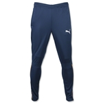 PUMA IT evoTRG Pant 16 (Teal)