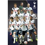 Tottenham 15/16 Players Poster