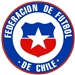 Chile National Soccer Team