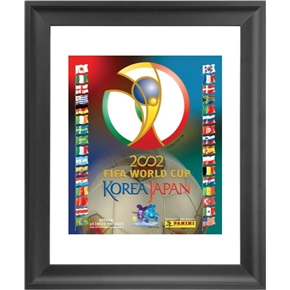 Panini 2002 FIFA World Cup Korea/Japan Framed Print 16x18